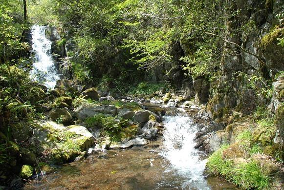 滝をめぐるツアー