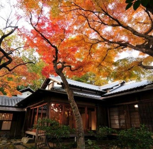 紅葉の中の老欅荘